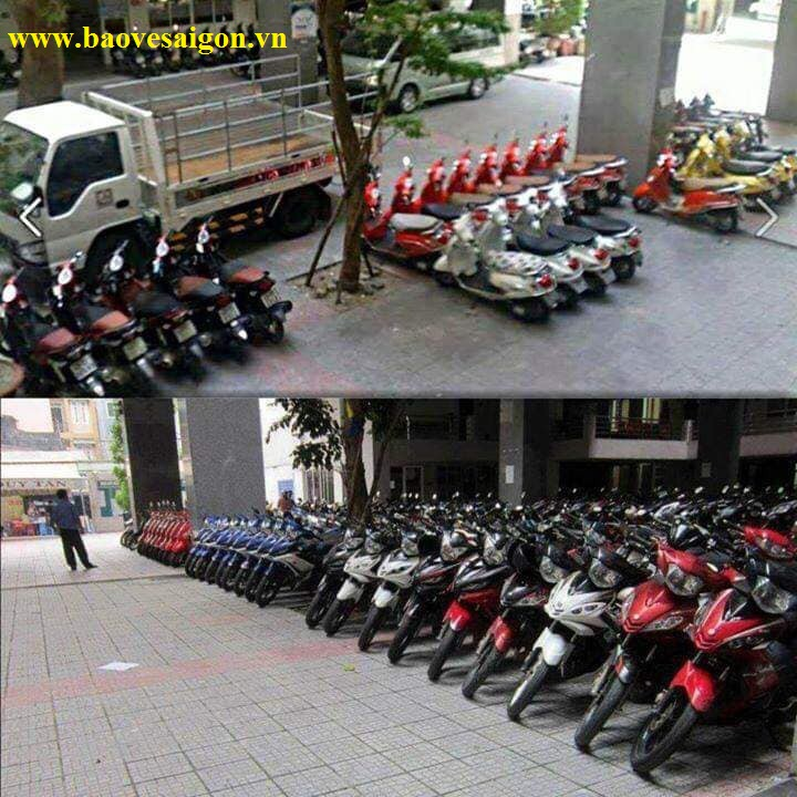Bảo vệ trường học xếp xe như cửa hàng trưng bày