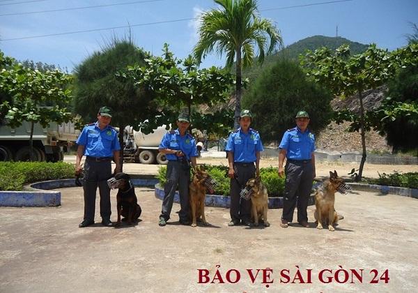 Bảo vệ và chó nghiệp vụ